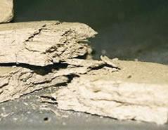 Friable asbestos